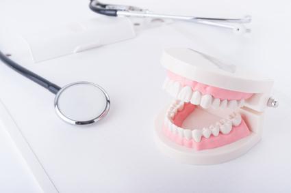 歯の模型と聴診器
