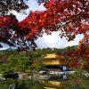 金閣寺の紅葉 見ごろ ライトアップ 2015&おすすめコース