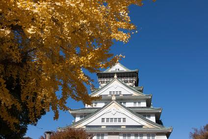 大阪城とイチョウ
